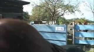 Azjatki rozbierają się na boisku